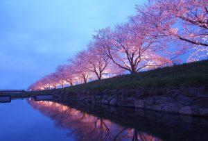 Conoscere il Giappone, tradizioni e modernità